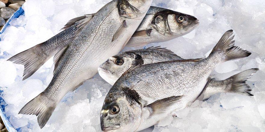 Rusya'ya balık ihracatımız 10 yılda 85 kat arttı