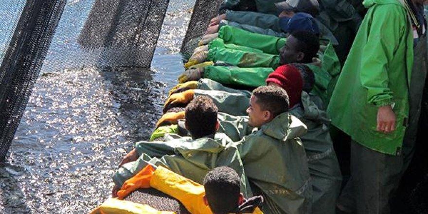Moritanya'da 52 Türk teknesi balık avlıyor
