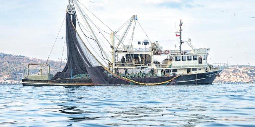 Türk tekneleri kaçan hamsinin peşinde