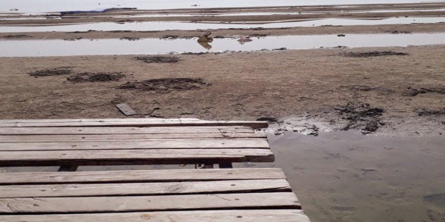Eğirdir Gölü kıyısında korkutan görüntü