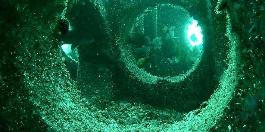 'Yapay Resif'ler balık popülasyonunu artırdı
