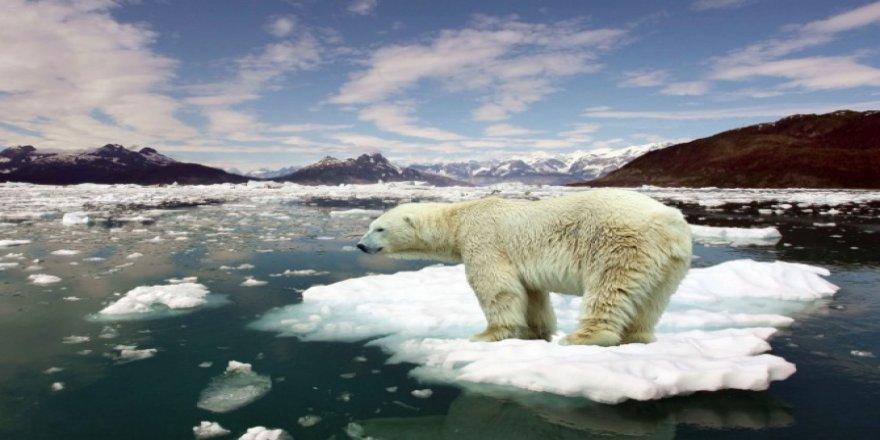 2018 yılı dördüncü en sıcak yıl oldu