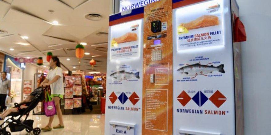 Dünyanın ilk balık ATM'si Singapur'da
