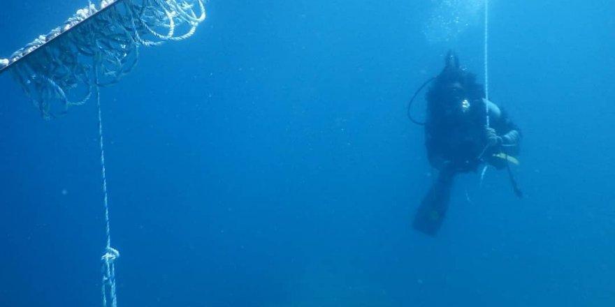 Çeşme Marina'dan kalamar yumurtlama yapay resif projesi!
