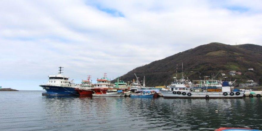 Denize ağ atan balıkçılar iskeleye boş dönüyor