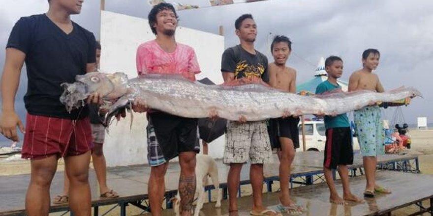 Deprem habercisi balık yine kıyıya vurdu