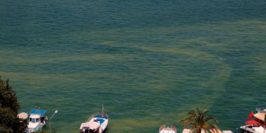 Tatil cennetinde denizin rengi değişti