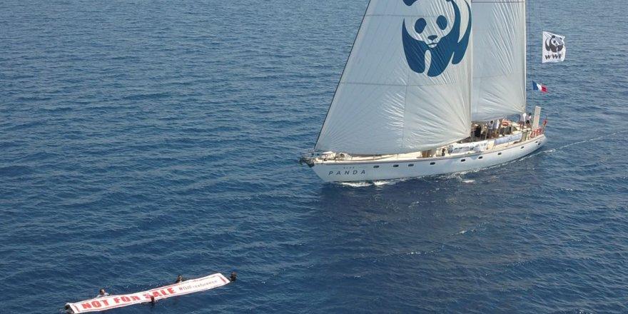 Blue Panda teknesi Türkiye'ye geldi