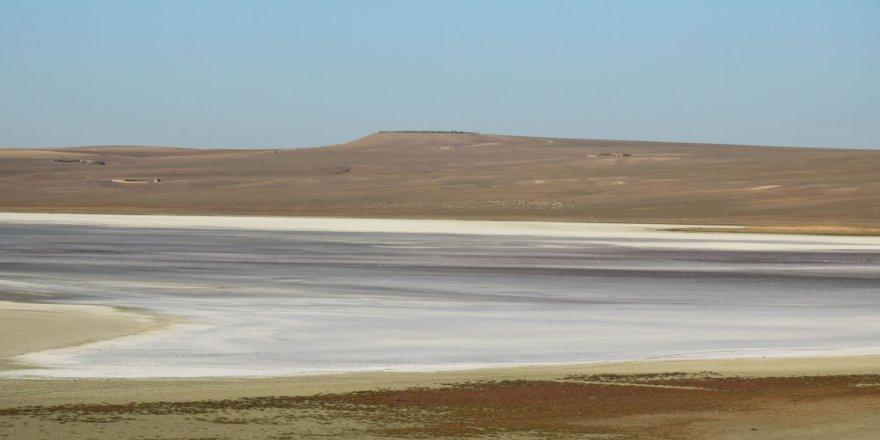 Göllerimiz ölüm döşeğinde