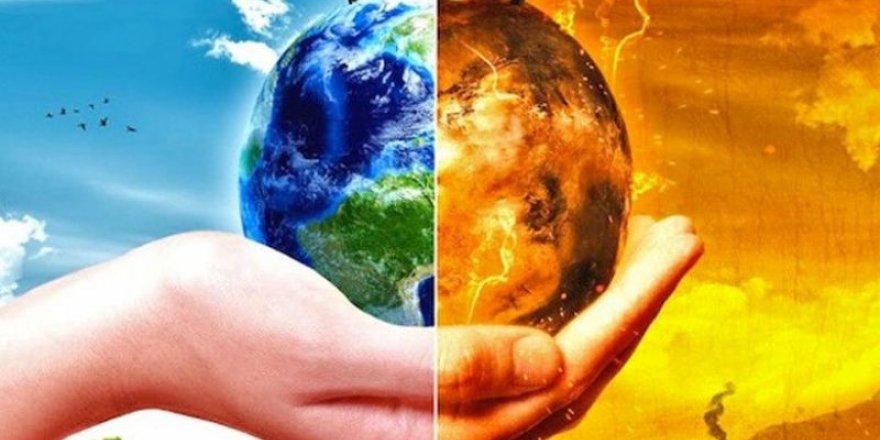 İklim değişikliği doğal yaşamı yok ediyor