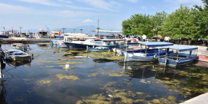 Köyceğiz Gölü ve Dalyan kanalları S.O.S veriyor