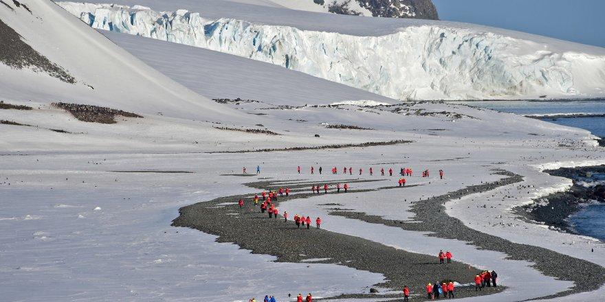Bilim insanlarının Antarktika'da beyinleri küçüldü