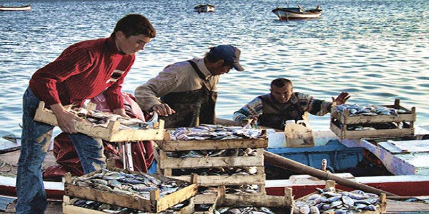Yeni kanun balıkçılar için umut