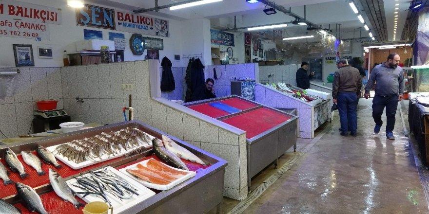 Balık sezonu üzdü
