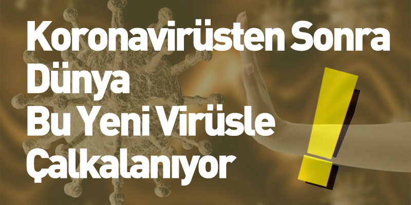 Koronavirüsten Sonra Dünya Bu Yeni Virüsle Çalkalanıyor