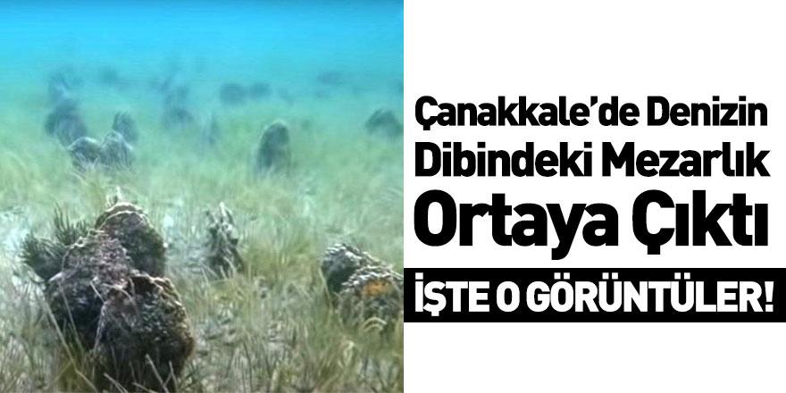 Müjdat Turan: Denizin Dibi Midye Mezarlığına Döndü