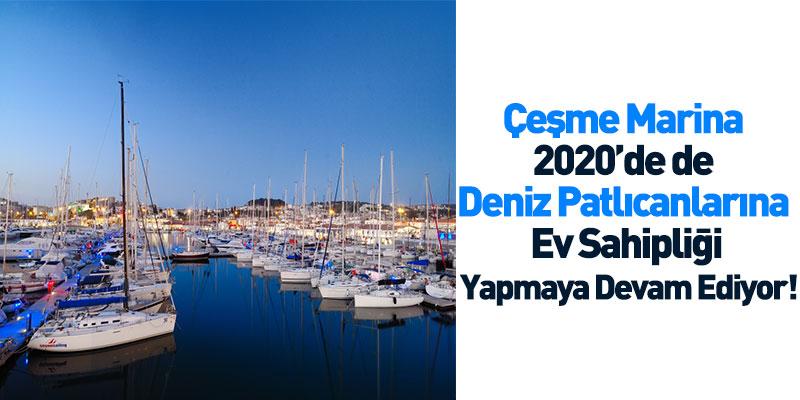 Çeşme Marina 2020'de de Deniz Patlıcanlarına Ev Sahipliği Yapmaya Devam Ediyor!