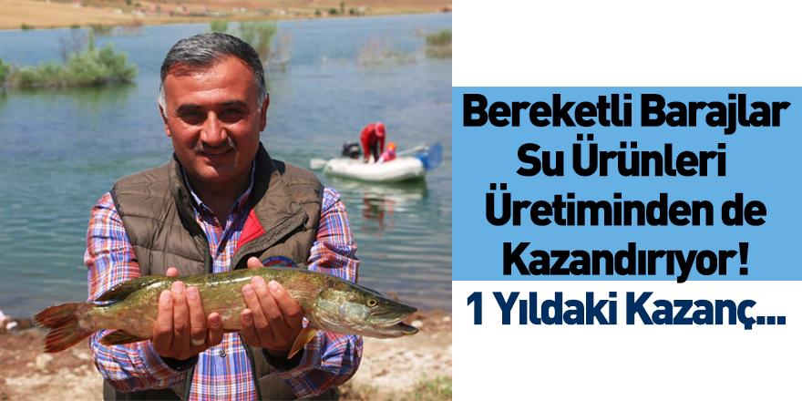 Baraj ve Göletlerdeki Su Ürünleri Üretiminin Geliri Açıklandı