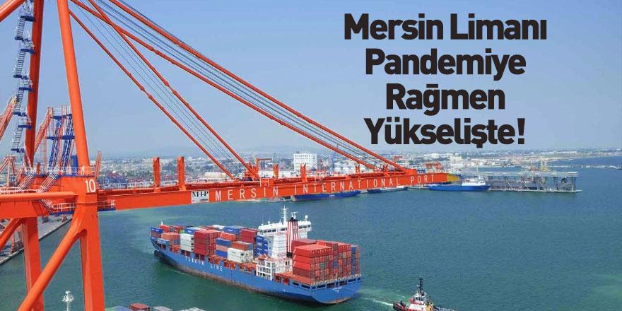 Mersin Limanı'nda Konvansiyonel Yük Hacmi Arttı