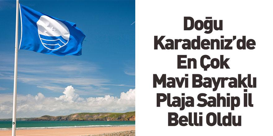 Doğu Karadeniz'in En Çok Mavi Bayraklı İli Ordu