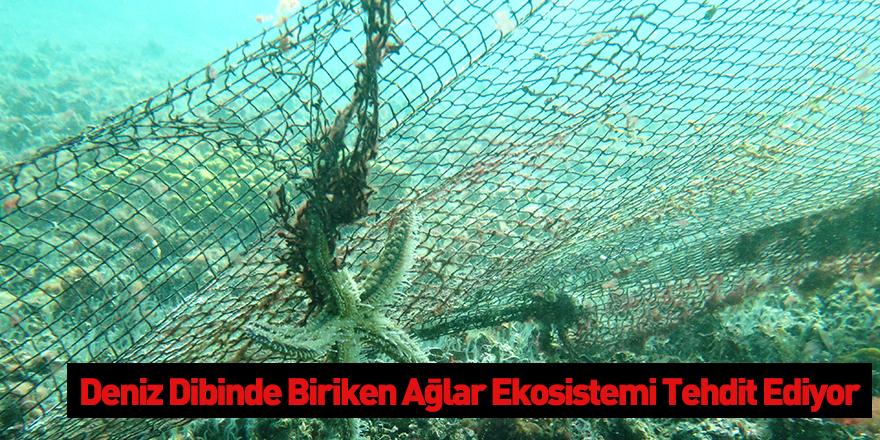 Deniz Dibinde Biriken Ağlar Ekosistemi Tehdit Ediyor