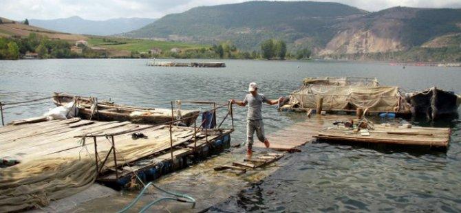 Derbent Barajı'nda yılda 200 bin balık yetiştiriliyor