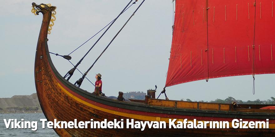 Viking Teknelerindeki Hayvan Kafalarının Gizemi