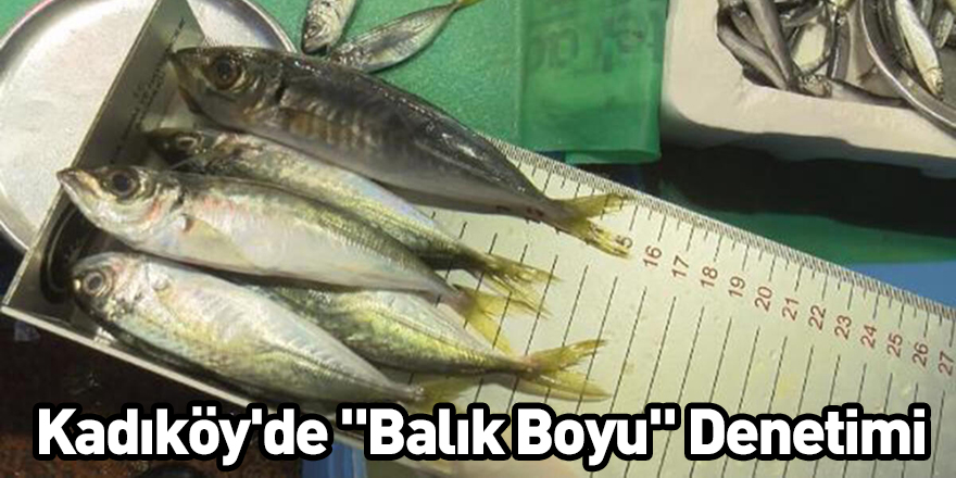"""Kadıköy'de """"Balık Boyu"""" Denetimi"""