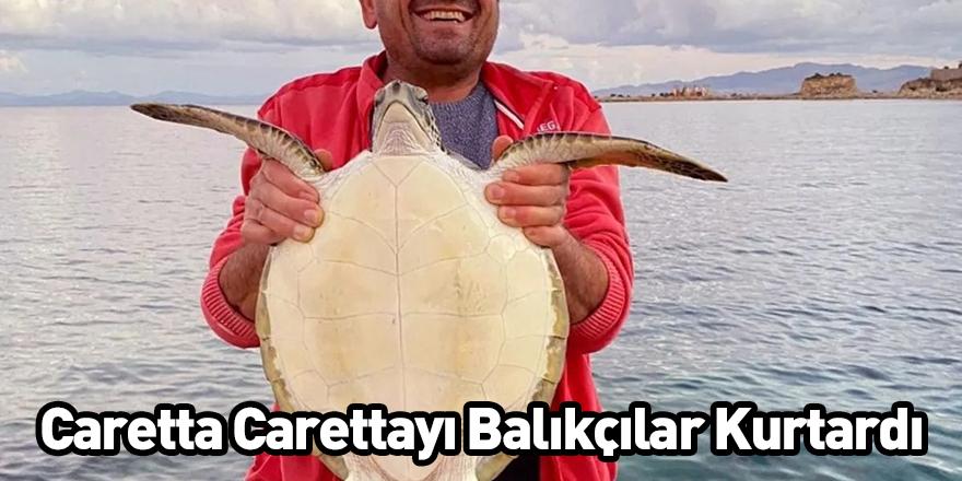 Caretta Carettayı Balıkçılar Kurtardı