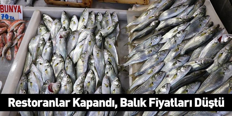 Restoranlar Kapandı, Balık Fiyatları Düştü