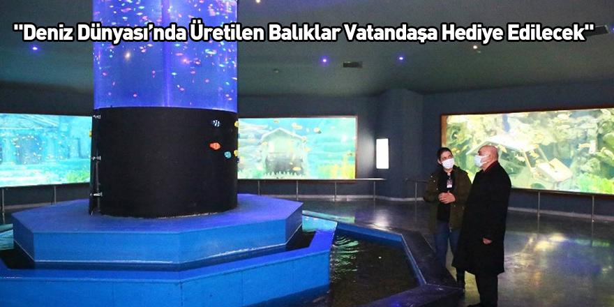 """""""Deniz Dünyası'nda Üretilen Balıklar Vatandaşa Hediye Edilecek"""""""