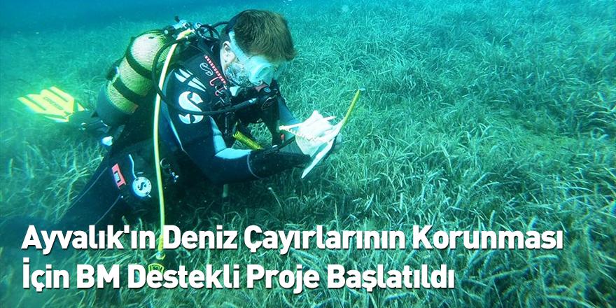 Ayvalık'ın Deniz Çayırlarının Korunması İçin BM Destekli Proje Başlatıldı