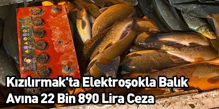 Kızılırmak'ta Elektroşokla Balık Avına 22 Bin 890 Lira Ceza