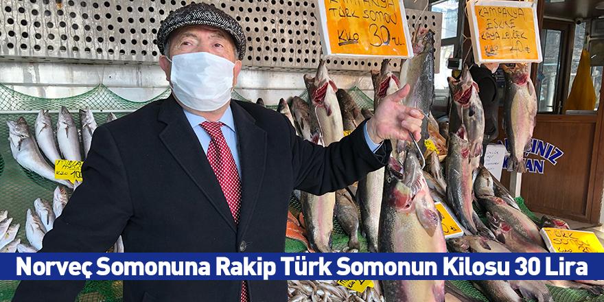 Norveç Somonuna Rakip Türk Somonun Kilosu 30 Lira