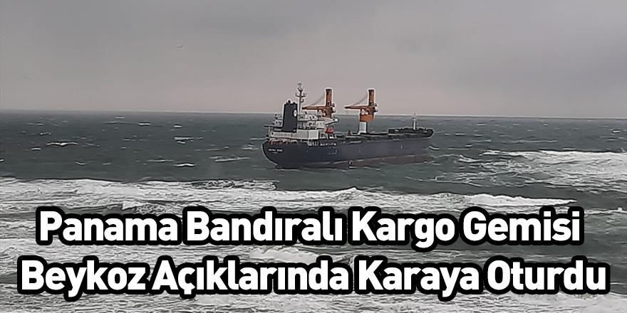 Panama Bandıralı Kargo Gemisi Beykoz Açıklarında Karaya Oturdu