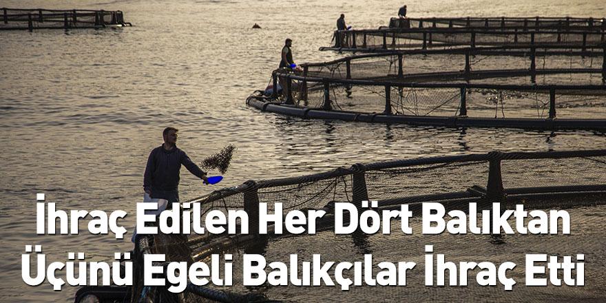 İhraç Edilen Her Dört Balıktan Üçünü Egeli Balıkçılar İhraç Etti