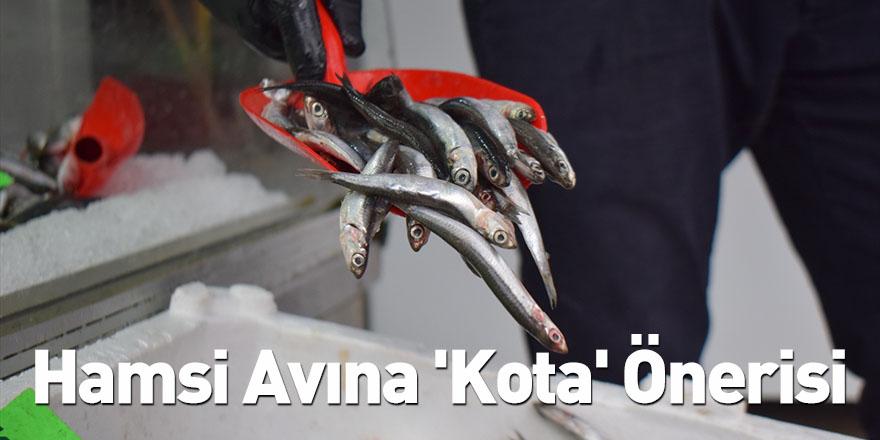 Hamsi Avına 'Kota' Önerisi