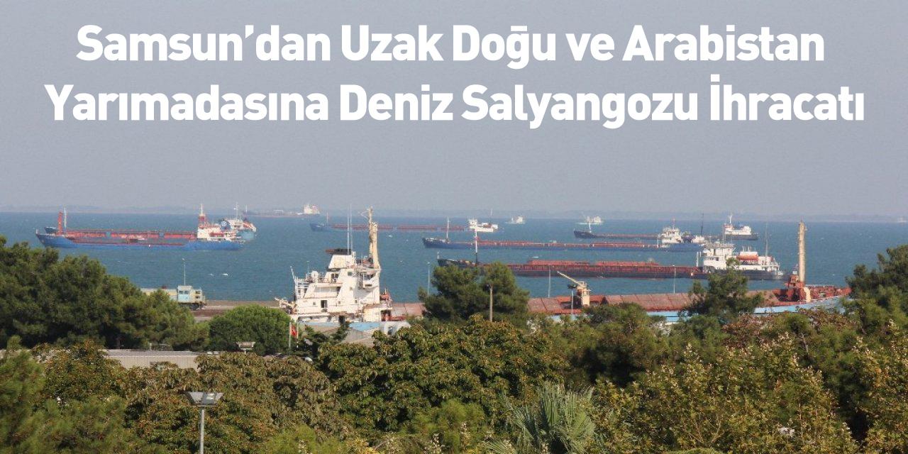 Samsun'dan Uzak Doğu ve Arabistan Yarımadasına Deniz Salyangozu İhracatı