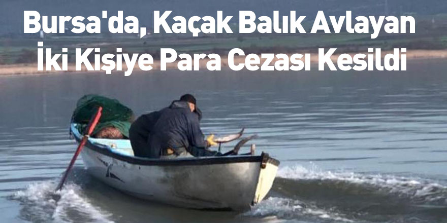 Bursa'da, Kaçak Balık Avlayan İki Kişiye Para Cezası Kesildi