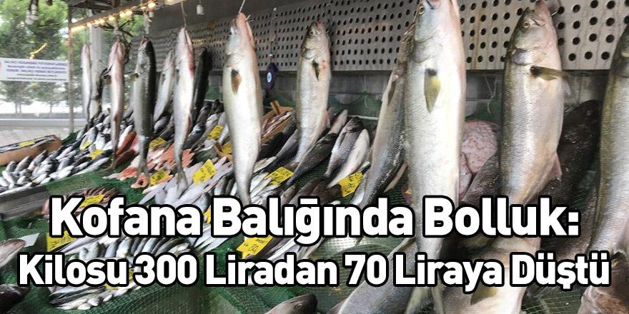 Kofana Balığında Bolluk: Kilosu 300 Liradan 70 Liraya Düştü