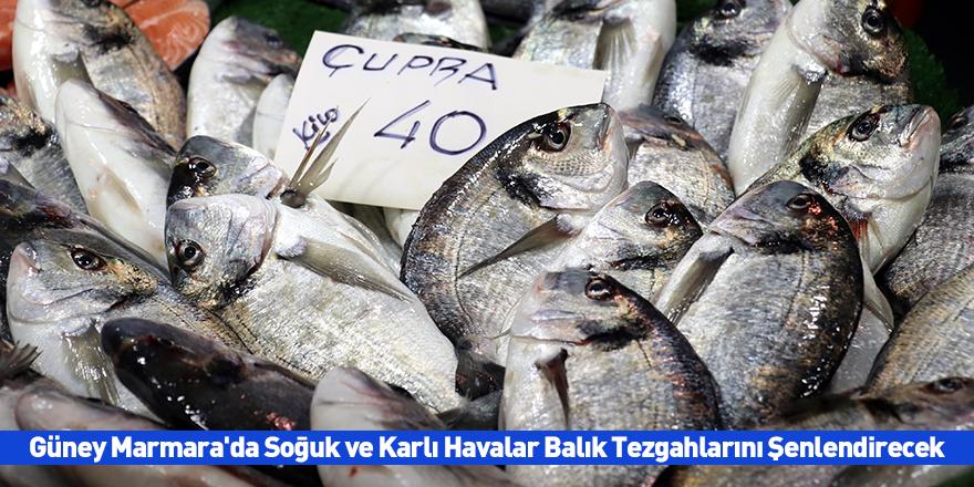 Güney Marmara'da Soğuk ve Karlı Havalar Balık Tezgahlarını Şenlendirecek