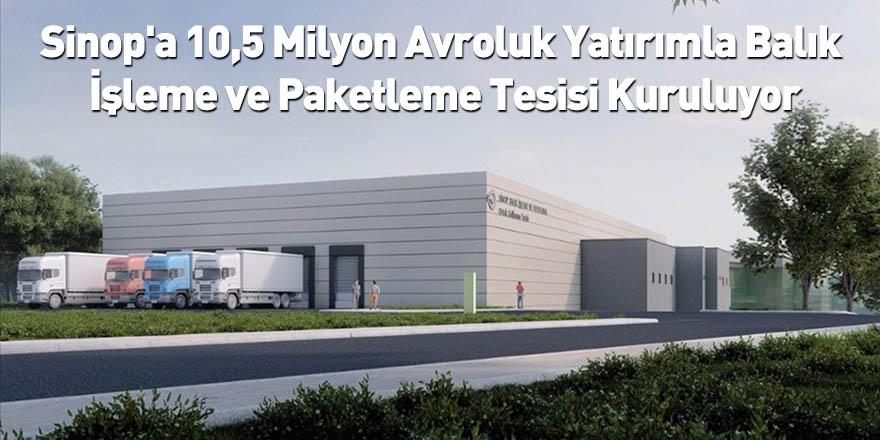 Sinop'a 10,5 Milyon Avroluk Yatırımla Balık İşleme ve Paketleme Tesisi Kuruluyor