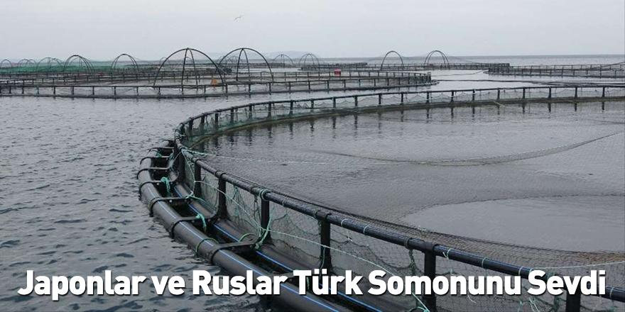 Japonlar ve Ruslar Türk Somonunu Sevdi