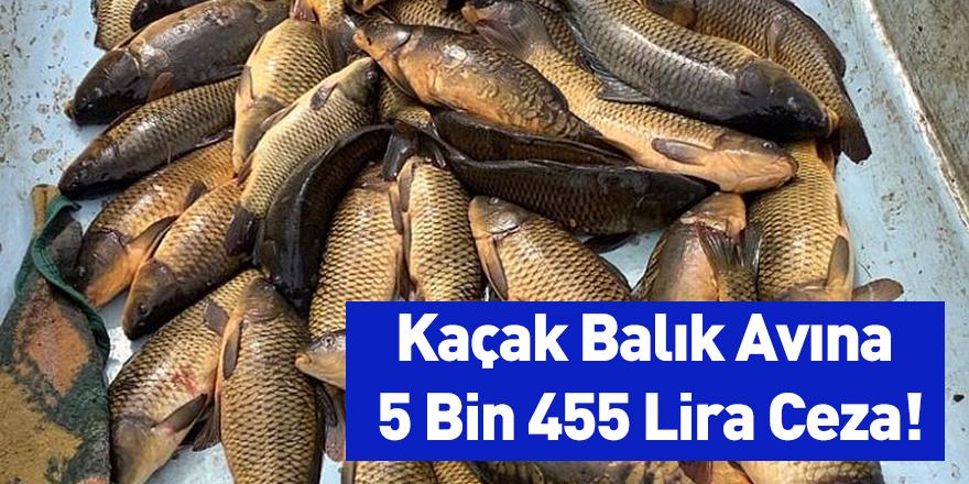 Kaçak Balık Avına 5 Bin 455 Lira Ceza!