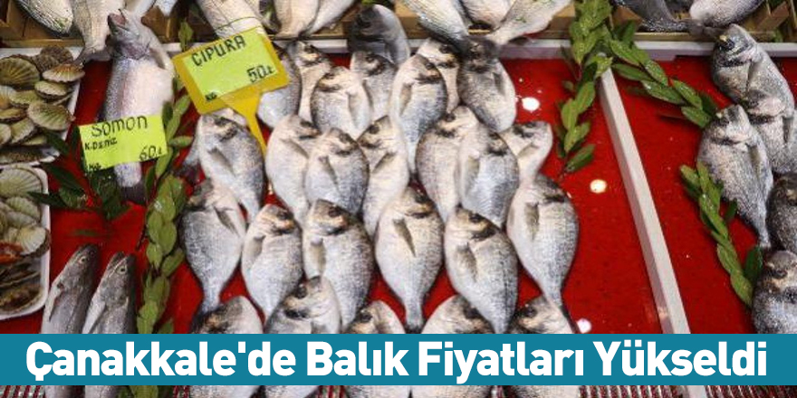 Çanakkale'de Balık Fiyatları Yükseldi