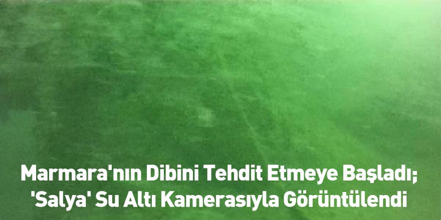 Marmara'nın Dibini Tehdit Etmeye Başladı; 'Salya' Su Altı Kamerasıyla Görüntülendi