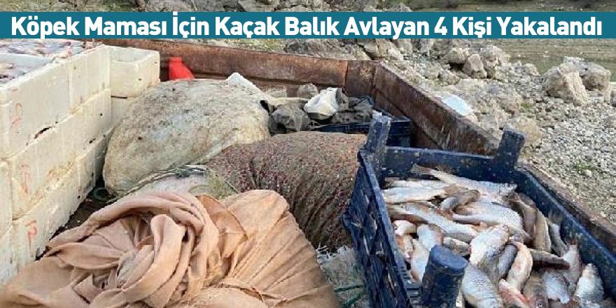 Köpek Maması İçin Kaçak Balık Avlayan 4 Kişi Yakalandı