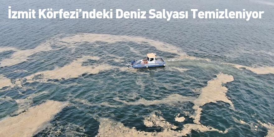 İzmit Körfezi'ndeki Deniz Salyası Temizleniyor