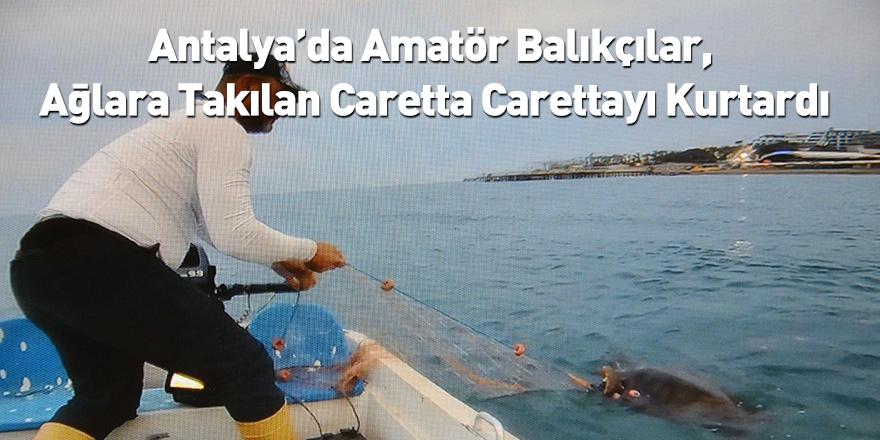 Antalya'da Amatör Balıkçılar, Ağlara Takılan Caretta Carettayı Kurtardı
