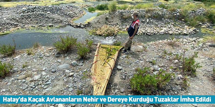Hatay'da Kaçak Avlananların Nehir ve Dereye Kurduğu Tuzaklar İmha Edildi